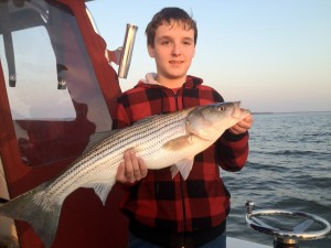 Beauty caught on a Surface plug near sunset, great Maryland fishing for Maxx!!!