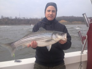 really windy day and some nice stripers!