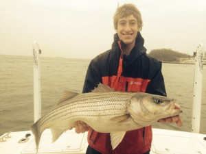 "A beautiful 35"" Striped Bass for Thomas!  Not bad for his first time ever on the bay for Stipers!"