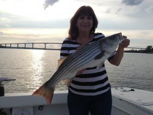Chesapeake Bay Beauty!