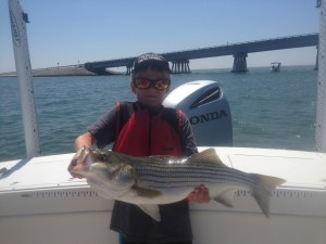 "A nice 28"" Striper for a great young ""almost 8 yr old"" angler!"