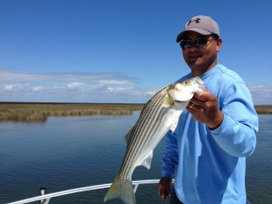 Here's Joe in some beautiful water and holding a nice Striper caught on a light stick......nice!!!!