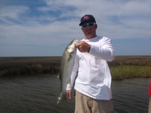 Chris caught many nice Stripers today off the bow of my boat.....most hits he could see happen!  Cool stuff!!!!