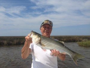 "Charles with a great ""nook and cranny"" Striper on a really windy day!"