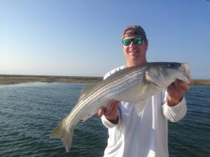 30+ inch stump fish!  Good stuff!