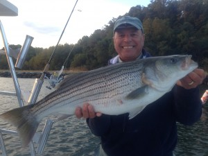 my buddy mike caught this one on a surface plug......BANG!  Released to see another day!