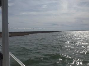 pretty stuff, exciting fishing!