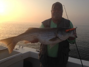 "Sunrise Surface Plugger!  35""er to start the day!"