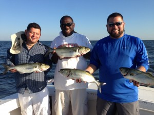 Big Blues and lots of stripers can happen all through august!