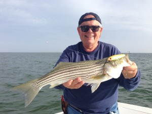 john lappin with a nice surface plugged striper!