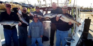 "Big fish and the guys who caught them range from 6'5"" to 7'  Wow!"