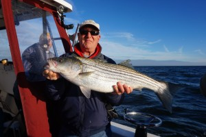 Great light tackle Striper caught in the cold water off Point Lookout this week!