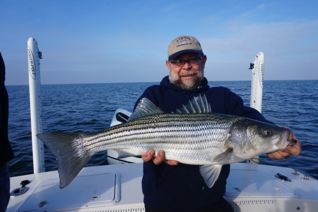Quick point lookout report and open walk on trip for for Point lookout fishing report