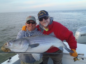 Nothing better than helping a great guy catch the light tackle Striper of 