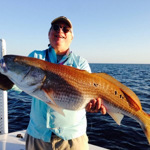 Huge bull red caught on light tackle under breaking Blues and Stripers in Aug 2015
