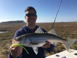 Nooks and Crannies catch good in April