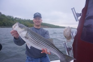 great surface plugged 
