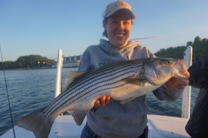 beautiful striper on 